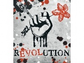 The revolution begins, Sw Anand Arun article in Kathmandu Post
